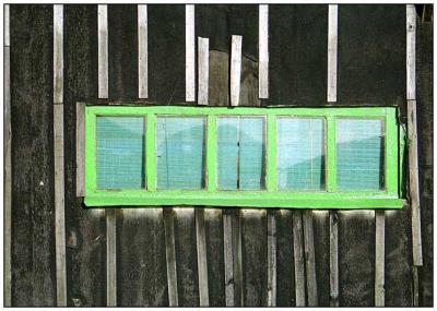 À ma fenêtre verte